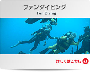 ダイビングショップWOW|ファンダイビング